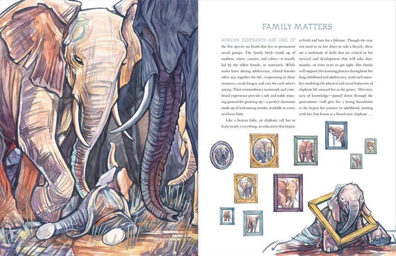"""""""Family Matters"""" spread in How to Be an Elephant"""