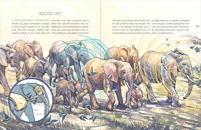"""""""Sound Off"""" spread in How to Be an Elephant"""